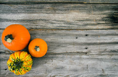 Rustic pumpkin on wood high angle view Royalty Free Stock Image