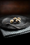 Rustic Quails Eggs. Farm Quails Eggs on an old pewter plate against a rustic background with selective focus and diffused natural light. A different type of Royalty Free Stock Photos