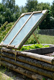 Rustic raised bed. Self-made wooden floor plan, salad plants feel good Royalty Free Stock Photography