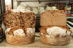 Rustic raisin and rye bread at farmers market. Typical bread from Galicia, Spain royalty free stock photo