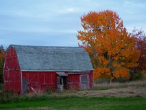 Rural Maine Scene with Rustic Red Barn stock photos