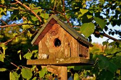 Rustic Wren Birdhouse. A weathered cedar birdhouse for wrens has twigs and grass protruding from the opening Stock Images