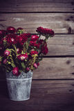 Rustic red flowers Royalty Free Stock Images