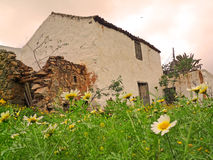 Rustic  restored ruin in Fuerteventura with foreground flowers Royalty Free Stock Image