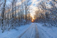 Rustic road in winter Stock Photo