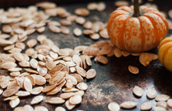 Rustic roasted pumpkin seeds Royalty Free Stock Image