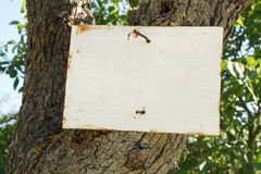 Rustic Rural Sign, Blanked for your Message. A hand-made sign nailed to a tree, blanked for your message Stock Image