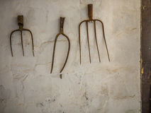 Rustic rusted pitchforks royalty free stock images