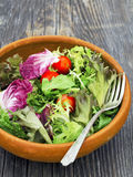 Rustic salad greens. Close up of rustic salad greens Royalty Free Stock Images
