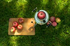 Rustic samovar steel teapot on the fresh spring summer lawn serve with the wooden board and apple. Picnic leisure vacation holiday. S. Top view flatlay Royalty Free Stock Images