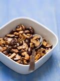 Rustic sauteed mushroom Stock Images