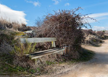 Rustic scene. Rural scene with wooden bench and different colorful background royalty free stock photography