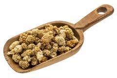 Rustic scoop of dried mulberries Stock Photo