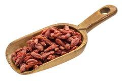Rustic scoop of goji berries Stock Images