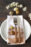 Rustic setting table Royalty Free Stock Photos