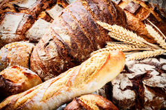 Rustic setting with various fresh bread Royalty Free Stock Image