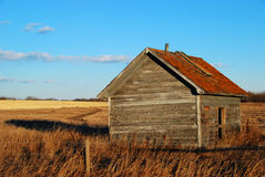 Rustic Shack. A weathered wooden shack stands the test of time in a farmer's field Royalty Free Stock Photography