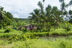 Rustic shack in jungle Royalty Free Stock Photo
