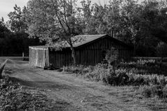 Rustic Shed Stock Images