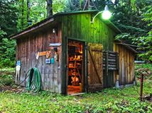 Rustic shed in woods Stock Photos