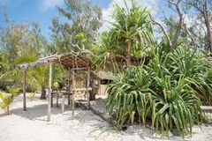 Rustic Shelter on Mystery Island. Rustic shelter with thatched roof on the beach in the tropical rainforest under a blue sky on Mystery Island, Vanuatu Stock Image