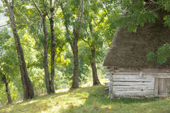 Rustic shelter. Shelter used for both cattle and their owners, hidden in a small forest area Stock Images