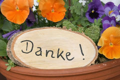 Rustic signboard with thanks and viola flowers Royalty Free Stock Images