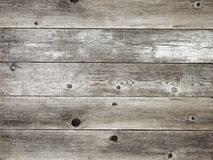 Rustic silver grey weathered barn wood board background. Rustic silver gray with grey weathered barn wood board background showing rich grain and knots royalty free stock photos
