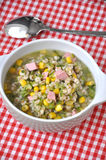 Spelt soup Royalty Free Stock Photography