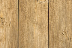 Rustic spruce wood boards Stock Image