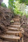 Rustic stairs with steep steps on walking trail to Wairoa Stream stock images