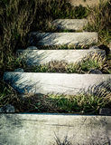 Rustic steps Royalty Free Stock Photo
