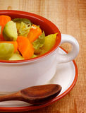Rustic Stew Stock Photography