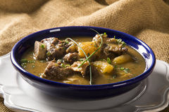 Rustic Stew meat with manioc called Vaca atolada in Brazil. Stock Photos