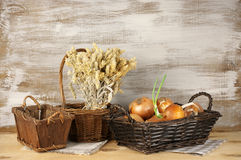 Rustic still life Stock Photography