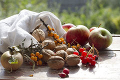 Rustic still life with apples, nuts and berries. On therustic wooden table Royalty Free Stock Image