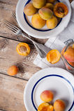 Rustic still life with apricots Stock Images