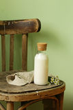 Rustic Still Life Dairy Products Royalty Free Stock Photos