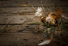 Rustic still life with eggs in vintage metall bucket royalty free stock images