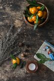 Rustic still life with fresh mandarins, dried herbs, books, candles, and a free space for text on wooden background, top view. Stock Image