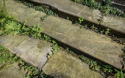 Rustic Stone Steps Stock Images
