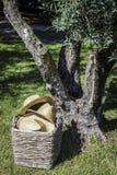 Rustic straw hats in garden summer scene under tree portugal. Rustic straw hats in garden summer scene under tree in portugal countryside royalty free stock photography