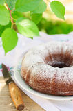 Rustic Style Bundt Cake Sprinkled with Icing Sugar Stock Images