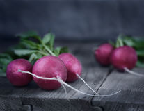 Rustic style. Fresh Radishes on the wooden table. Stock Photos