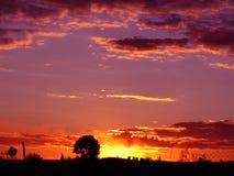 Rustic sunset in crimson tones Stock Images