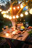 Rustic table with appetizers and wine in illuminated garden. In summer royalty free stock photography