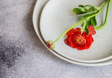 Rustic table setting. With ranunculus flowers on concrete background with copy space royalty free stock photo