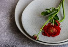 Rustic table setting. With ranunculus flowers on concrete background with copy space stock images