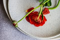 Rustic table setting. With ranunculus flowers on concrete background with copy space royalty free stock images
