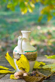 Rustic table and water pot. With nuts in autumn sunlight Royalty Free Stock Photo